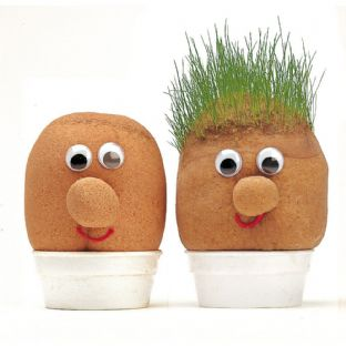 Mr Grasshead - grass grows & can be trimmed